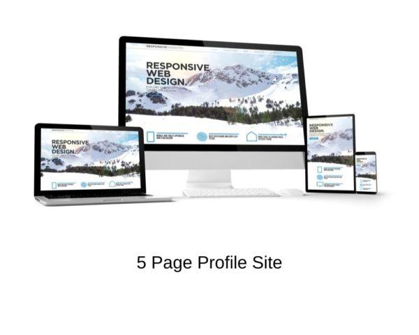 DFY Portfolio Website Hosting Package